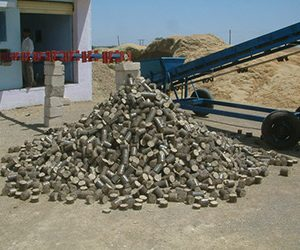 Briquetting Sscrew Conveyor