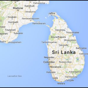 briquetting plant in sri-lanka