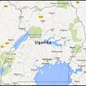 briquetting plant exporter uganda