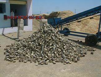 Briquetting Sscrew Conveyor in india