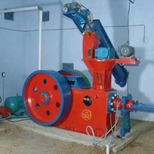 mini briquetting plant manufacturer in india